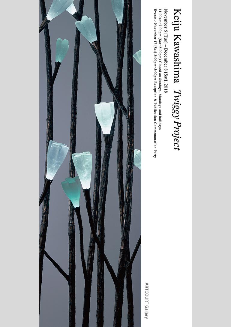 川島慶樹「Twiggy Project」アートコートギャラリー