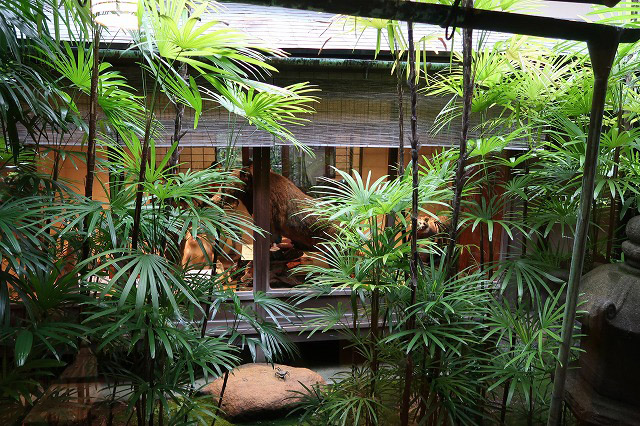 町家の坪庭越しに見えるクマのはく製:「自然史博物館が仕かける 「Where culture meets nature」展」赤坂志乃