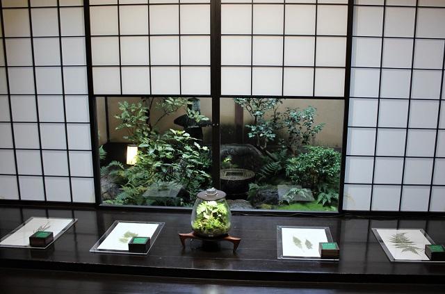京町家の坪庭などに使用されるコケやシダをインテリアにした「Moss-Light LED」