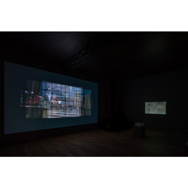 林 勇気 × 京都大学 iPS細胞研究所 (CiRA)《細胞とガラス》(2020年、撮影:表 恒匡)